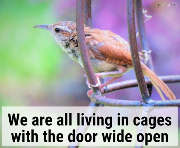 We are all living in cages with the door wide open